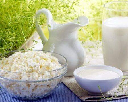 Молоко и творог
